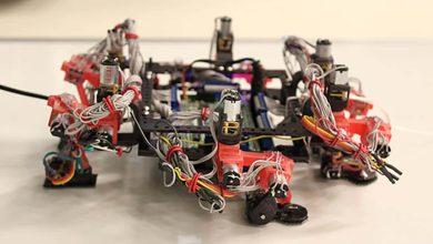 Un robot inspiré du gecko prêt au voyage dans l'espace