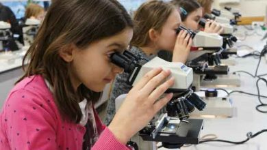 """Une fête pour """"cristalliser"""" le public et la science"""