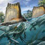 Illustration du Spinosaurus tirée de l'édition d'octobre du National Geographic.