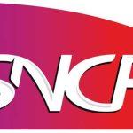 WiFi : la SNCF interpellée par Axelle Lemaire