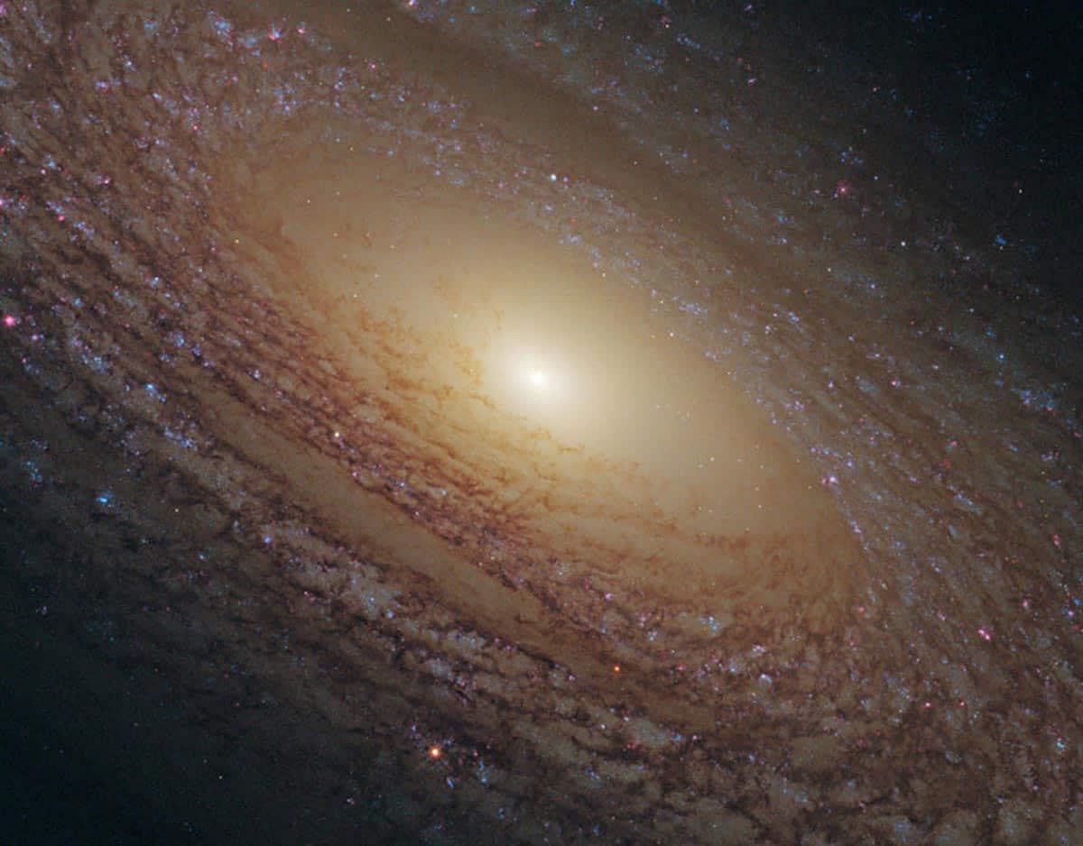 18. La formation des étoiles est un processus important dans la formation de l'univers. Il y a encore beaucoup de choses que les astronomes ne comprennent pas. La force motrice derrière la formation stellaire est particulièrement floue comme pour NGC 2841. (Photo : NASA/ESA/Hubble)