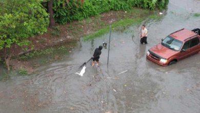 Le terme « réchauffement climatique » banni au ministère de l'environnement de Floride