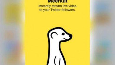 Meerkat : le streaming video en direct sur Twitter