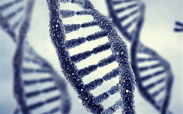 La Chine pense à rendre ses enfants plus intelligents grâce à une manipulation génétique