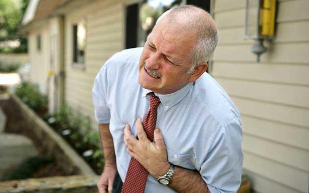 Des cellules souches pourraient réparer les dégâts au cœur