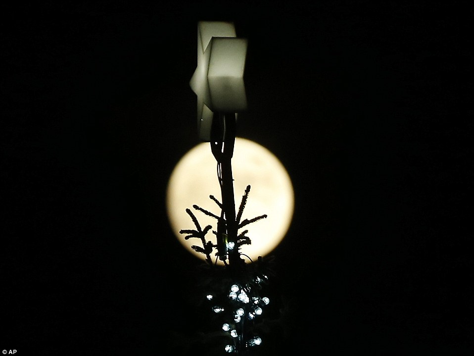 The_full_moon_rises_over_the_traditional_Norwegian_Christmas_tre