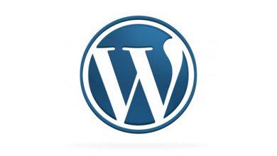 Photo de WordPress a 7 ans ! Joyeux anniversaire WordPress !