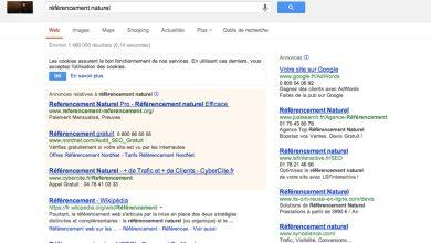 Photo of Internet : si le référencement naturel est prôné, ce sont pourtant les services de Google qui sont privilégiés
