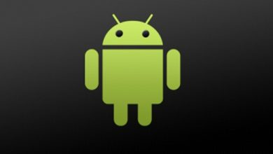 Photo de Nexus 10 : pas de migration vers Android 4.3 ?