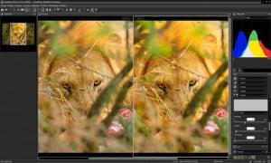 Capture NX-D : Nikon propose un logiciel de traitement d'images RAW gratuit