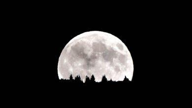 Photo of Avez-vous remarqué la super Lune de cette nuit ?