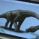 Le nouveau dinosaure appartient à la famille des titanosaures, des dinosaures herbivores géants.