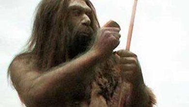 Photo de Des ossements de Néandertal en Normandie