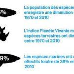 Les populations d'eau douce déclinent plus rapidement