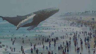 Photo de Magic Leap réussit une levée de fond de 542 millions de dollars, notamment auprès de Google