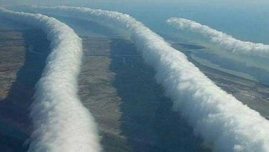 Photo de Morning glory cloud : les pilotes surfent sur les nuages !