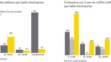 Photo de Edition logicielle : ce poids lourd de l'économie française