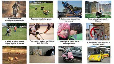 Google : un algorithme pour décrire les photos