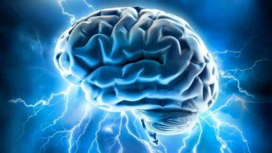 Photo de Dicter une action à un cerveau humain par la pensée est possible