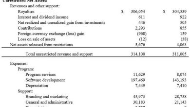 Mozilla annonce 314 millions de dollars de revenu en 2013