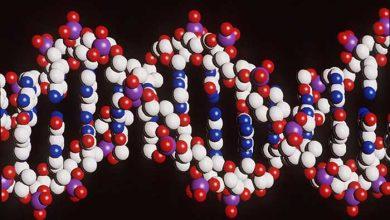 Photo of ADN : le Royaume-Uni précurseur en termes de recherche contre le cancer