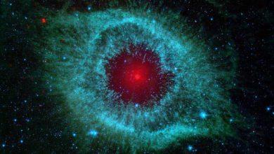 Photo de Cosmos : la forme de vie dominante est certainement des robots extrêmement avancés