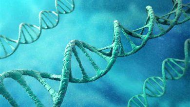 Photo of Génomique : l'espoir d'améliorer le traitement des patients atteints de cancer