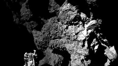 Photo de Rosetta : une réponse sur l'origine de l'eau sur Terre ?