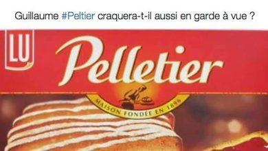 Photo of Twitter se déchaîne pour la garde à vue de Guillaume Peltier