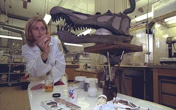 Claudia Amphlett applique du vernis sur une réplique en résine époxy du crâne d'un dinosaure piscivores Baryonyx au Musée d'histoire naturelle.