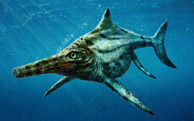Dearcmhara shawcrossi : était-ce l'ancêtre du monstre du Loch Ness ? 1