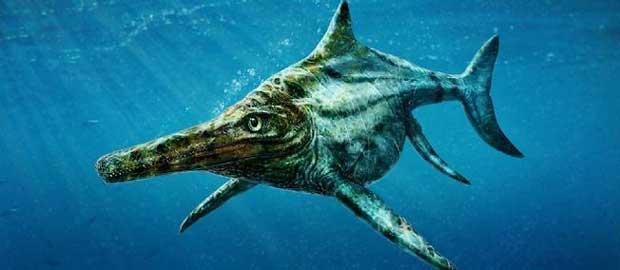 Des paléontologues identifient un reptile marin géant purement écossais 1