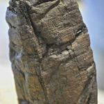Les papyrus d'Herculanum se dévoilent sous les rayons X 4