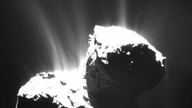 Photo of Tchouri : les dernières révélations de Rosetta