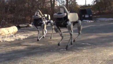 Photo de Boston Dynamics présente un chien robot plus petit, plus agile