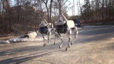 Photo de Boston Dynamics : un nouveau chien robot qui a gagné en agilité