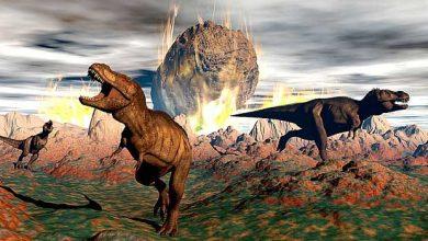 Photo de La matière noire à l'origine de la disparition des dinosaures