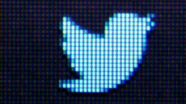 Les tweets sponsorisés quittent leur nid 1