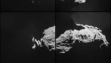 Photo de Rosetta a fait un survol rapproché de Tchouri
