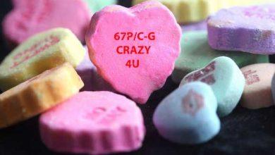Photo de Rosetta va se « blottir » auprès de Tchouri pour la Saint Valentin