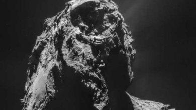 Photo of Rosetta a frôlé Tchouri pour la Saint-Valentin
