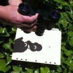 Pourquoi les enfants ne pourraient-ils pas observer l'éclipse solaire ?