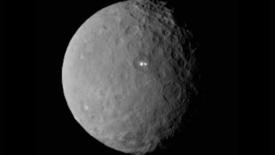 La sonde Dawn réussit sa mise en orbite autour de Cérès