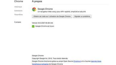 37 failles de sécurité comblées dans Google Chrome 43
