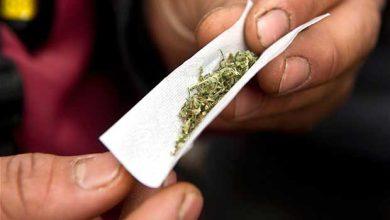 Enfance : fumer du cannabis réduit la croissance