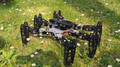 Photo de Tel un animal blessé, un robot s'adapte aux pannes