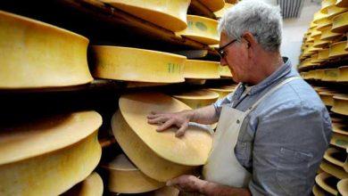 Photo of Un siècle pour percer le mystère des trous dans le fromage