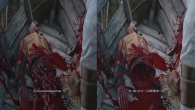 Photo of Le sexe et la violence retirés du The Witcher 3 dans certains pays
