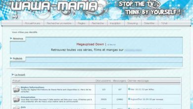 15,6 millions d'euros de dommages et intérêts contre le créateur du site Wawa mania