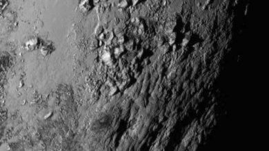 Photo of Pluton : les premières surprises de New Horizons